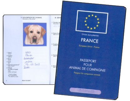 vacances passeport animal