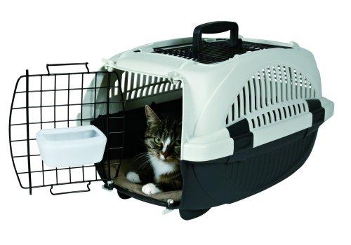 vacances chat boite de transport